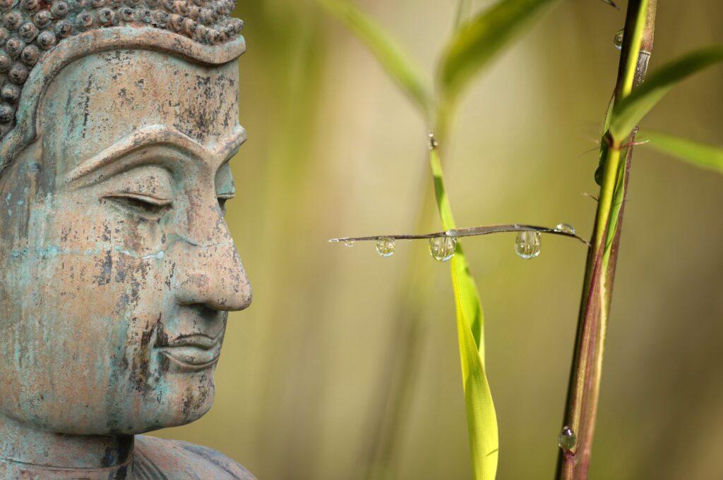 Lone Bornemann | Akupunktur & Healing | Spirituel Udvikling og Meditation